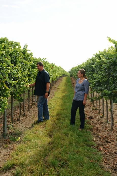 Die Schenks im Weingarten